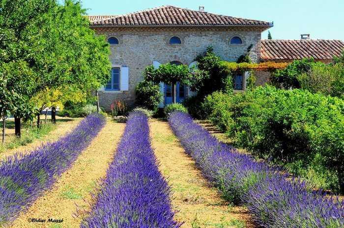 Ristrutturare una casa colonica restauro di un casale - Ristrutturare casale di campagna ...