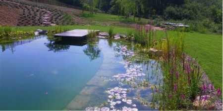 Bio piscina2 int ext la tua impresa edile for Bio piscina